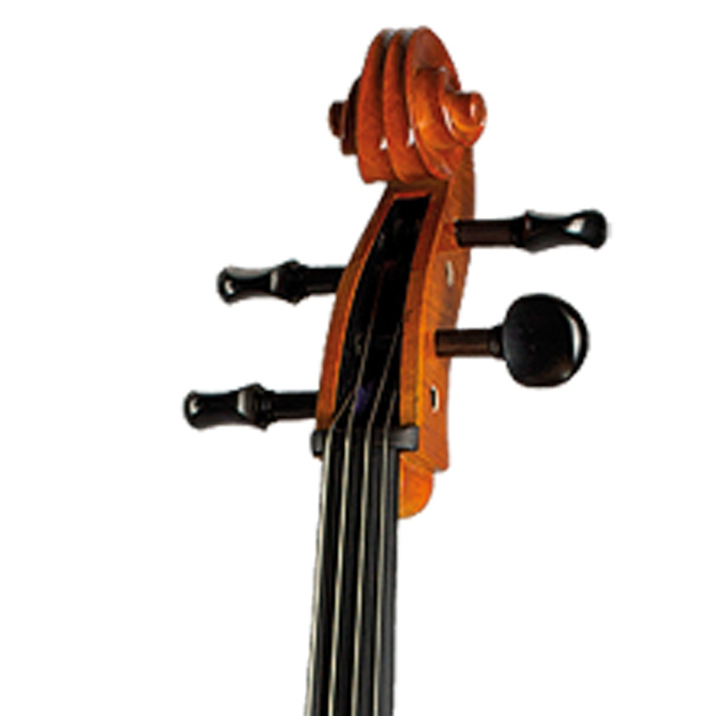 Paesold Cello PA600-3
