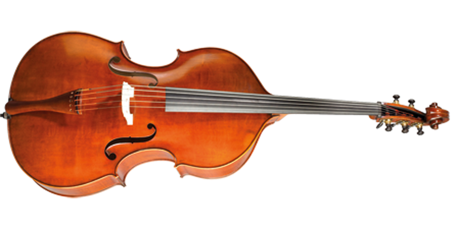 Paesold Double Bass PA599-1