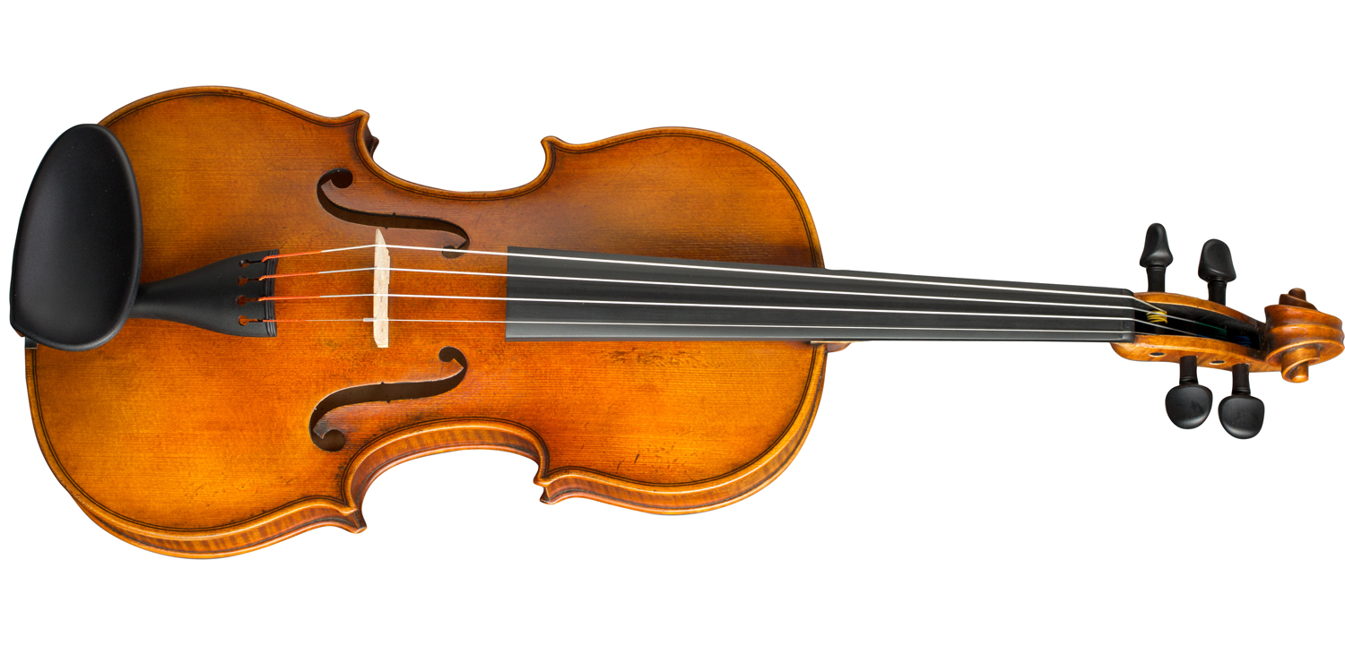"Paesold Violin PA806-GW ""Green World""-2"