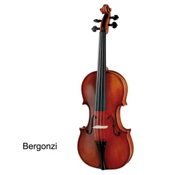 Paesold Violin PA805 Series